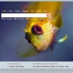 Suchmaske der Suchmaschine Bing