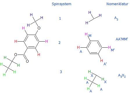 Beispiel Spinnomenklatur